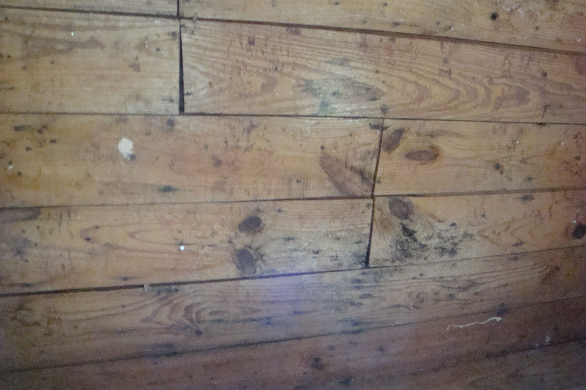 Restoring Shiplap Interior Houston Construction Home